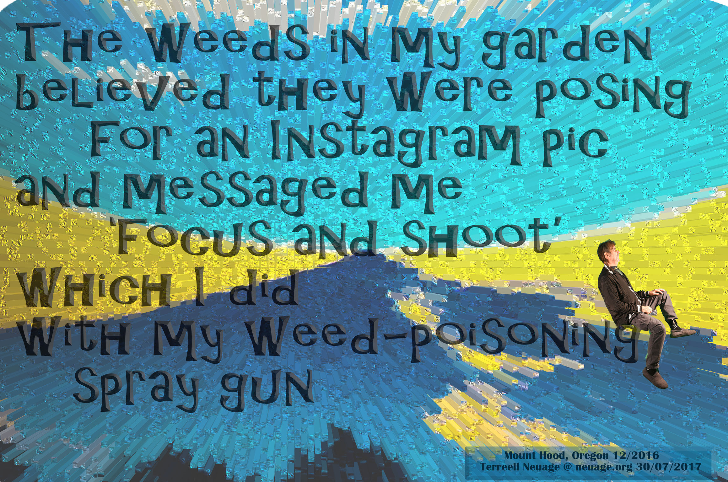 The weeds in my garden believed they were posing for an Instagram pic