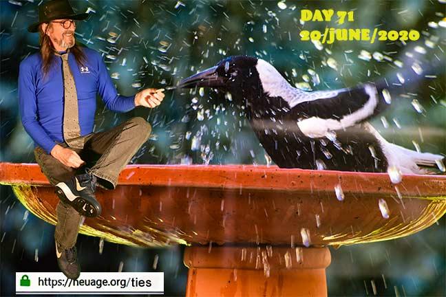 week 11 day 71 tie challenge of terrell neuage