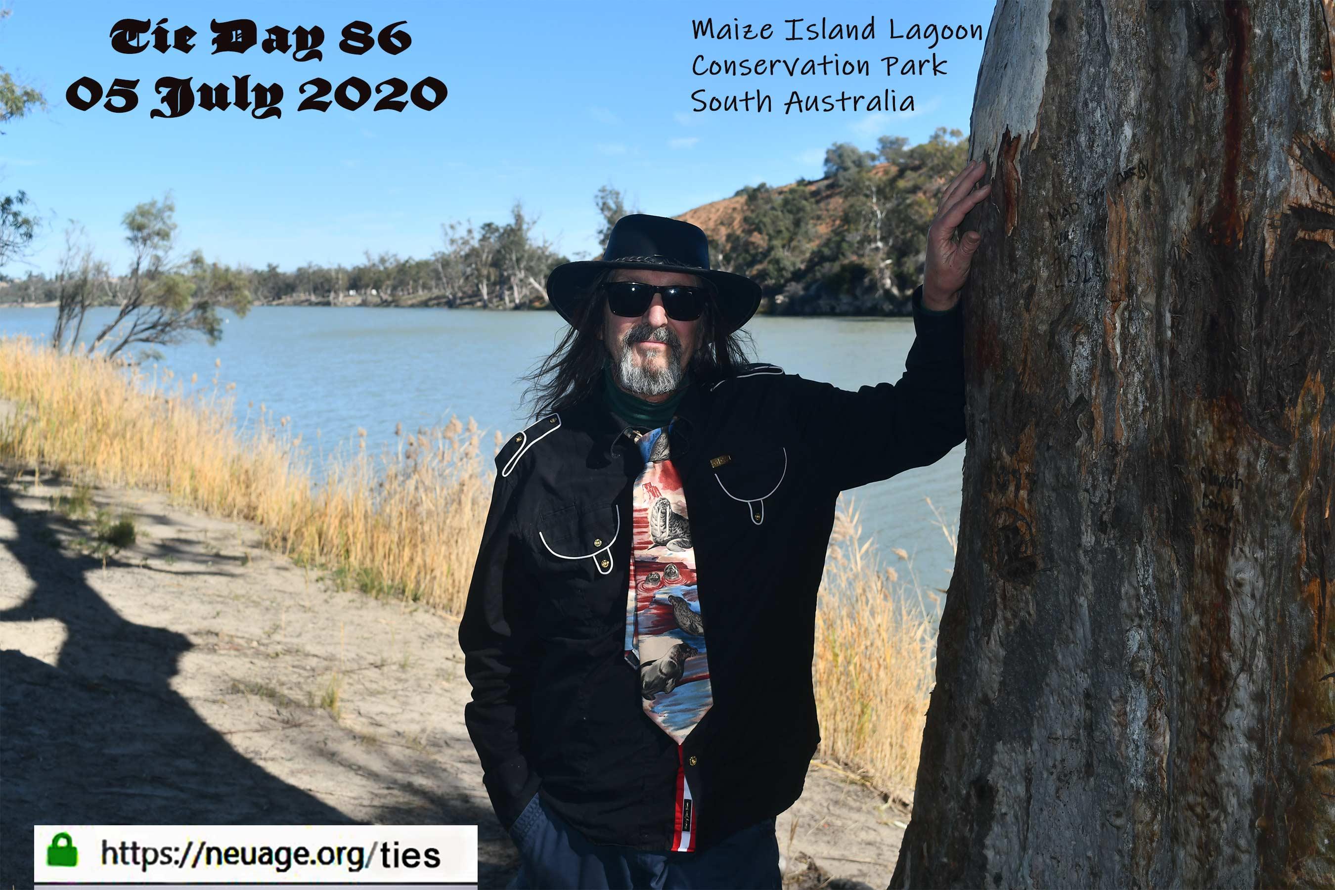 week 13 day 86 tie challenge of terrell neuage